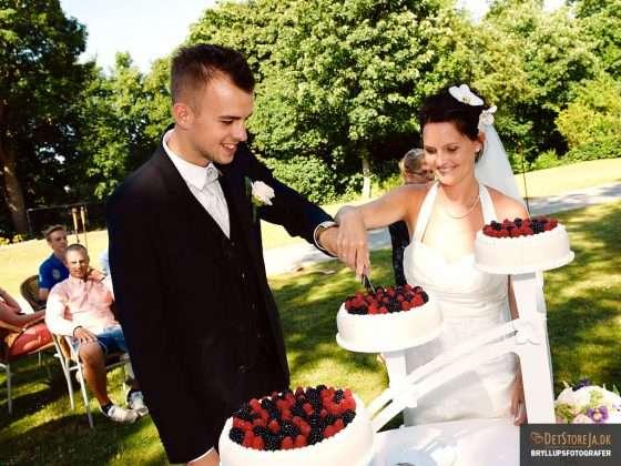 fotograf til festen brudepar skærer kagen for udendørs